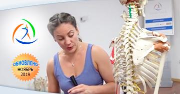 Онлайн видео семинара Анатомический минимум тренера